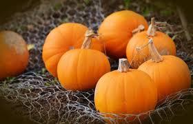 October Market Comment